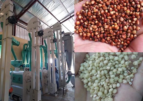 Sorghum Processing Equipment