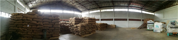 160T/Day Coffee Bean Cleaning Plant Built in Ethiopia