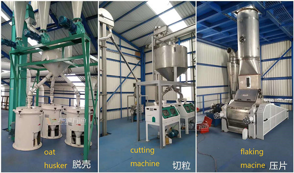 1T/Hour Oat Flakes Processing Line Built by Win Tone