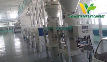broad bean processing plant.jpg