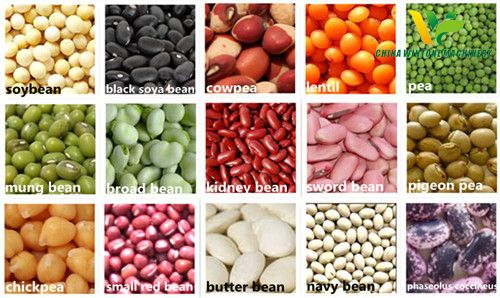 bean peeling, kernel making, and grits and flour milling line.jpg