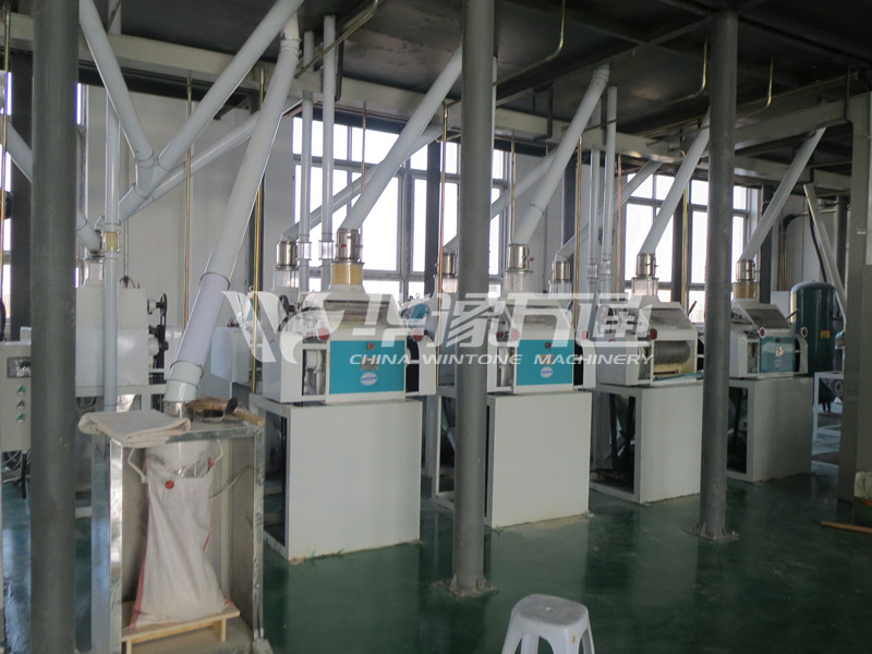 bean peeling, kernel making, and grits and flour milling plant