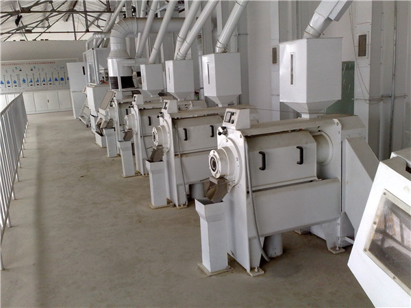 Millet Whitening and Polishing Machine