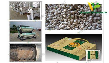 Chinese pearl barley dehulling machine.jpg