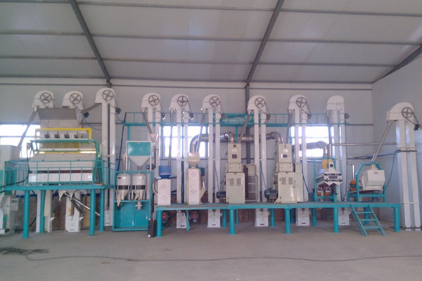 Complete Quinoa Processing Plant